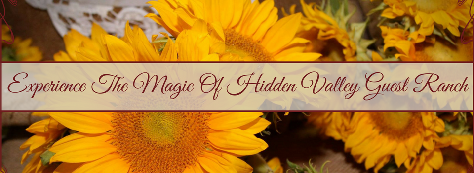 Experience the magic of hidden valley guest ranch